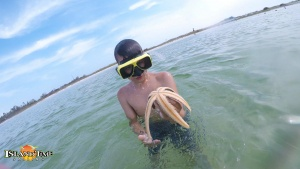 image of a boy holding a starfish found during a snorkeling trip